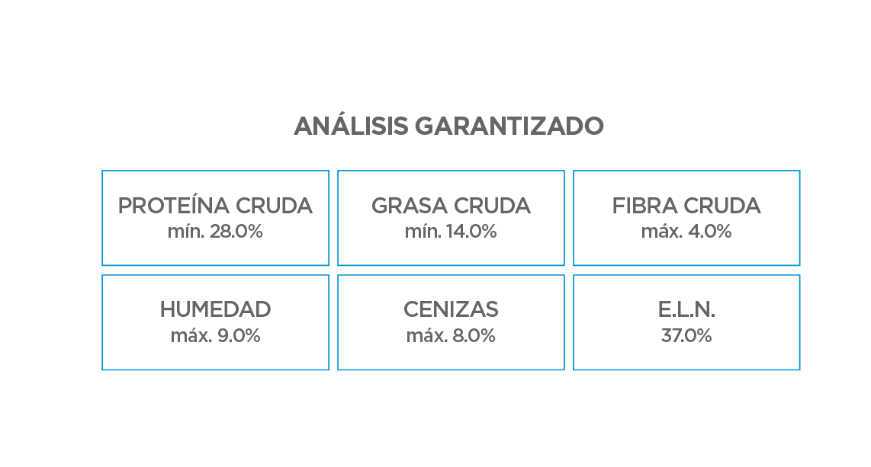 Análisis Garantizado__Cachorro